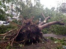 2009, Ураган в Новосибирске