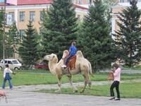 Центр Кызыла