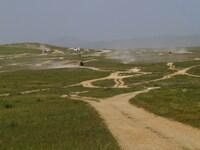 Типичные монгольские направления